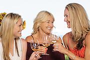 Wine Tasting at BlakesLee Winery