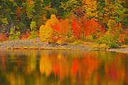 The Acadian forest in autumn foliage reflected in Indian Brook. <br />Indian Brook<br />Nova Scotia<br />Canada