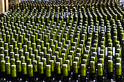 Thousands of bottles standing, bottle necks forming a pattern. Bodega Del Anelo Winery, also called Finca Roja, Anelo Region, Neuquen, Patagonia, Argentina, South America