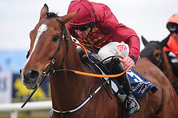 Pallasator ridden by Davy Russell go on to win Underwriting Exchange Novice Hurdle during Ryan Air Gold Cup Day of the 2018 Easter Festival at Fairyhouse Racecourse, Ratoath, Co. Meath.