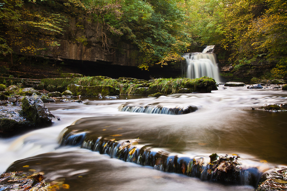 Waterfall in autumnal deciduous woodland. West Burton, Yorkshire.