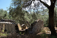 The ruins of an old olive press in an olive grove in Fontana on the island of Paxos, The Ionian Islands, Greece, Europe