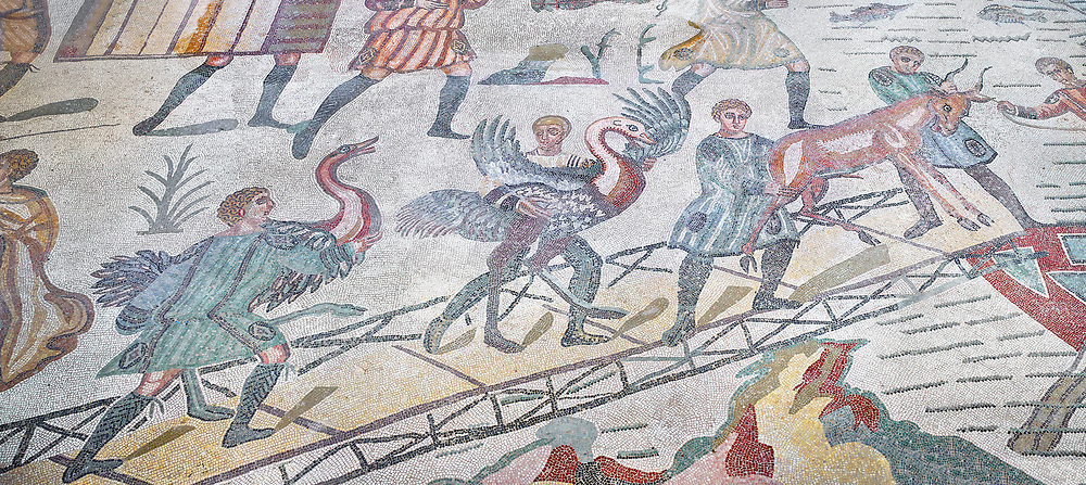 Ambulatory of the Great Hunt Roman mosaic, African birds are loaded onto a ship, room no 28, at the Villa Romana del Casale, first quarter of the 4th century AD. Sicily, Italy. A UNESCO World Heritage Site.<br /> <br /> The Great Hunt ambulatory is around 60 meters long (200 Roman feet) and connects the master's northern apartments with the triclinium in the south. The door in the centre of the the Great Hunt ambulatory leads to audience hall. <br /> <br /> The Great Hunt Roman mosaic depicts African animals being hunted and put onto ships to be taken to the Colosseum. .<br /> <br /> If you prefer to buy from our ALAMY PHOTO LIBRARY  Collection visit : https://www.alamy.com/portfolio/paul-williams-funkystock/villaromanadelcasale.html<br /> Visit our ROMAN MOSAIC PHOTO COLLECTIONS for more photos to buy as buy as wall art prints https://funkystock.photoshelter.com/gallery/Roman-Mosaics-Roman-Mosaic-Pictures-Photos-and-Images-Fotos/G00008dLtP71H_yc/C0000q_tZnliJD08