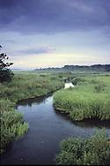Stoney Brook flows through the marsh toward Wing Island.