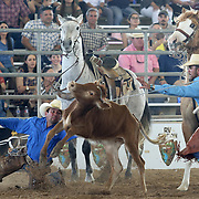 Roel Santa Maria, left, stumbles while chasing after a steer with Jaime Salinas, right, while competing with team Shut 'Em Down during the steer roping section of the ranch rodeo Sunday, March 11, 2018 at the Rio Grande Valley Livestock Show in Mercedes. The ranch rodeo takes five team members through competitions that showcase to the work they do daily on the ranch. photo by Nathan Lambrecht/The Monitor