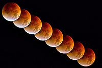 Lunar Eclipse Captured in Boulder. Composite of 8 images taken with a Nikon D2xs camera and 200 mm f/2 lens and 3.0 TC-E teleconverter. (ISO 400, 400 mm, f/4, 1/1.6 sec).