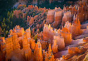 Bryce Canyon National Park, a sprawling reserve in southern Utah, is known for crimson-colored hoodoos, which are spire-shaped rock formations. The park's main road leads past the expansive Bryce Amphitheater, a hoodoo-filled depression lying below the Rim Trail hiking path. It has overlooks at Sunrise Point, Sunset Point, Inspiration Point and Bryce Point. Prime viewing times are around sunup and sundown.