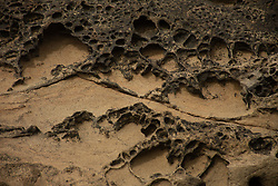 Eroded Sandstone Sea Stacks Detail, Kalaloch Beach 4, Olympic National Park, Washington, US