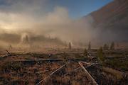 Yellowstone National Park (Photo by David Stubbs)
