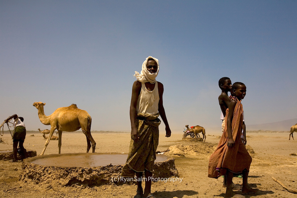 Afar nomads water their camels at a small well in the Danakil