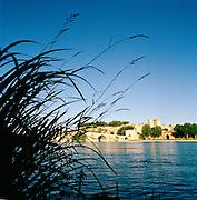 Pont Saint-Bénezet on the Rhône River, Avignon, France