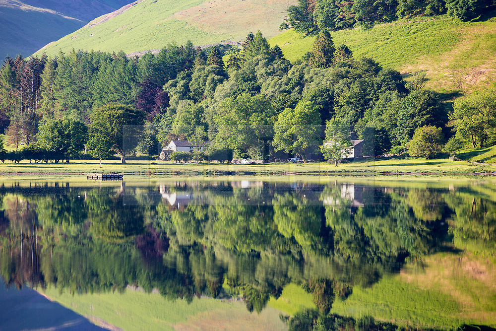 © Licensed to London News Pictures. 07/06/2018. Buttermere UK. Tree's around  Loweswater lake reflect into the still water this morning on a sunny day in Cumbria. Photo credit: Andrew McCaren/LNP