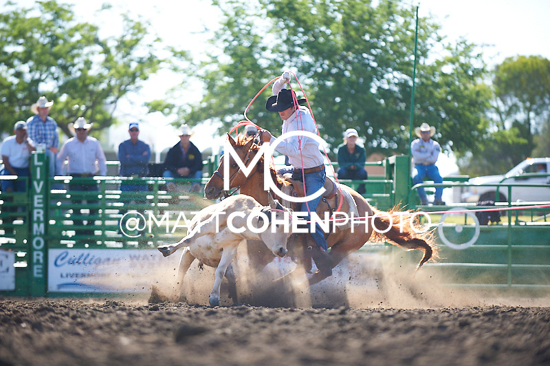 Team roper Wade Hooker of Nuevo, CA competes at the Livermore Rodeo in Livermore, CA<br /> <br /> <br /> UNEDITED LOW-RES PREVIEW<br /> <br /> <br /> File shown may be an unedited low resolution version used as a proof only. All prints are 100% guaranteed for quality. Sizes 8x10+ come with a version for personal social media. I am currently not selling downloads for commercial/brand use.