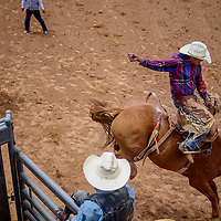 Saddle bronc rider Kane Kee holds on as his horse leaps from the chute during the Gallup Inter-tribal Indian Ceremonial rodeo Saturday at Red Rock Park.