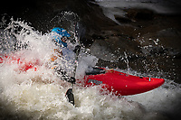 White water kayakers decend the New Haven river during the annual Ledges Race, sponsored by the Vermont Paddler's Club, Bristol, Vermont, USA