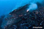 """pillow lava erupts from an underwater lava tub at ocean entry of Kilauea Volcano, Hawaii Island ("""" the Big Island """"), <br /> Hawaii, U.S.A. ( Central Pacific Ocean )"""