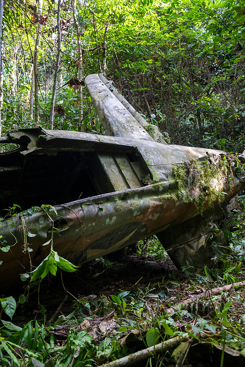 On April 5, 1944, on the return from an attack on Japanese forces in Hollandia, the A-20 Havoc piloted by 2nd Lt. Thomas E. Freeman crashed into the jungle near the Clay River in what is now Papua New Guinea. The remains of the two crew were recovered in 1967. Seventy-five years after the crash, the American insignia is still visible on the fuselage.<br /> <br /> (June 21, 2019)