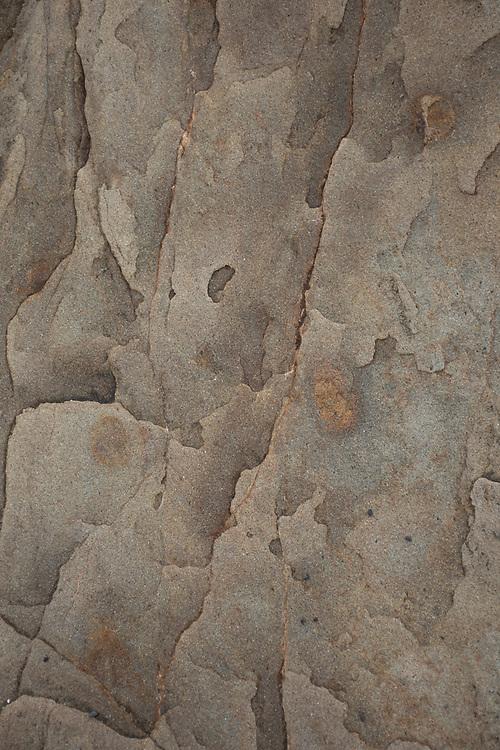 Eroded Sandstone Sea Stacks Detail, Kalaloch Beach 4, Olympic National Park, Washington, US