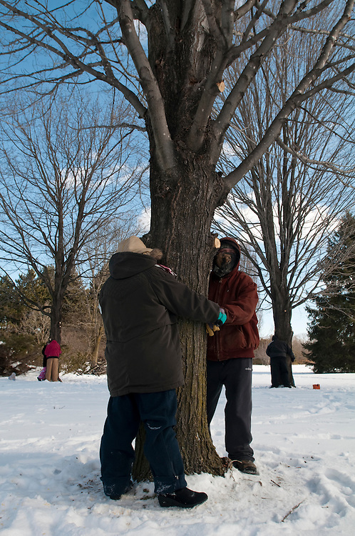 Matt Dixon   The Flint Journal..Eric Ashby (right foreground), 33 and his fiancé Sarah Armstrong, 26, both of Flint compete in a tree-hugging contest at For-Mar Nature Preserve in Burton, Saturday, Feb. 12. Contestants are not allowed any artificial warming devices (hand warmers, electric socks, etc.) and must hold the hands of their fiancé with a tree between them at all times. For-Mar Nature Preserve is celebrating its 40th Anniversary and is giving away a free garden wedding as part of the grand prize as well as several other prizes from local businesses.