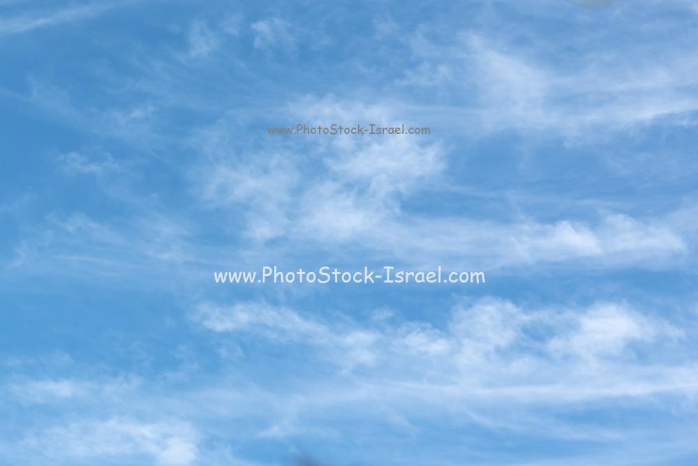 Light Cirrus clouds over Mediterranean Sea
