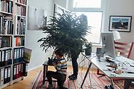12.01.2020 Magdeburg, Büchnerstr. 9, Janet & Hugo Krieg.<br /> <br /> Es wird Zeit das letzte Relikt aus dem vergangenem Jahr zu entfernen, Ostern seht ja quasi vor der Tür. Im dritten Stock Altbau fällt einem die Entscheidung leicht, wie man am besten einen trockenen Nadelbaum entfernt. Das Fenster zum Hof hilft und die kürzeste Verbindung zuwischen zwei Punkten ist immer eine Gerade.<br /> <br /> © Harald Krieg
