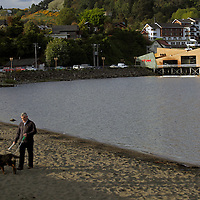 South America, Chile, Puerto Varas. Man walking his dog on lake beach of Puerto Varas.
