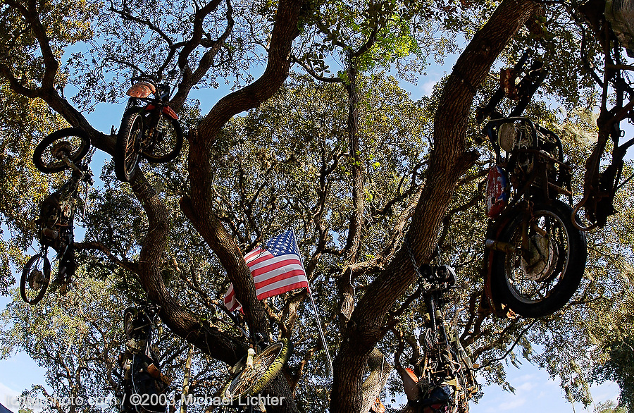 The Hanging Tree at the Last Resort, Port Orange, FL. 2003<br /> <br /> Limited Edition Print from an edition of 50. Photo ©2003 Michael Lichter.