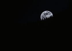 THEMENBILD - der Vollmond geht über einem Wald auf, aufgenommen am 07. April 2020, Kaprun, Österreich // the full moon rises over a forest on 2020/04/07, 2020, Austria. EXPA Pictures © 2019, PhotoCredit: EXPA/ Stefanie Oberhauser