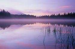 North America, Canada, British Columbia, Bowron Lakes, misty lake at sunrise