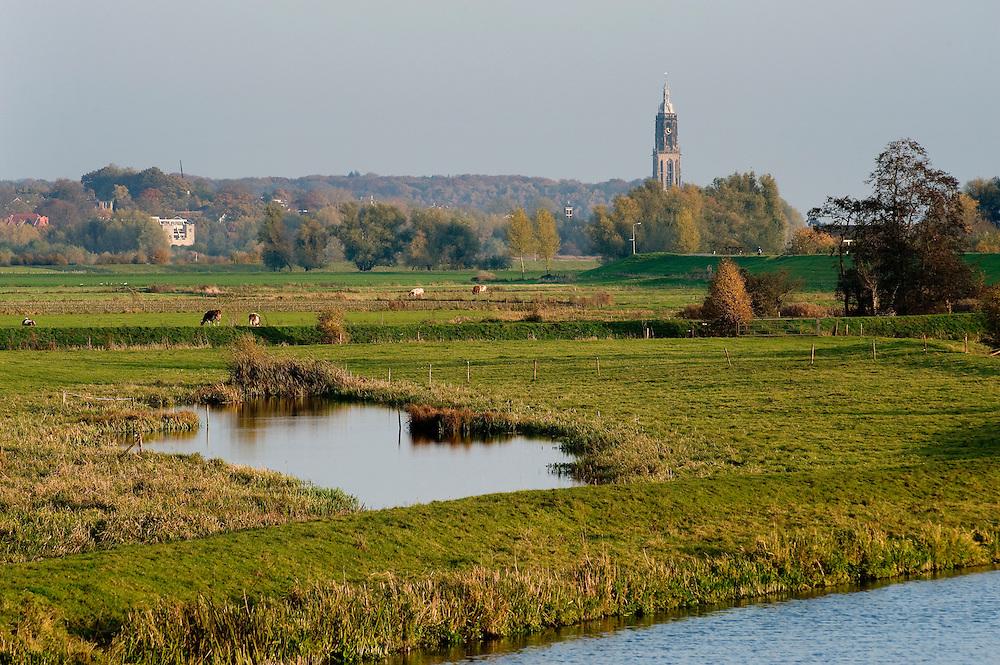 Nederland, Omgeving Kesteren, 7 nov  2008.Langs de Nederrijn tussen Maurik en Kesteren. Uiterwaardenlandschap. Toren is de kerk van Rhenen...Foto (c) Michiel Wijnbergh