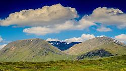 Summer landscape on the edge of Rannoch Moor, Scotland<br /> <br /> (c) Andrew Wilson   Edinburgh Elite media