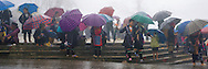 sapa in the morning rain with colorful umbrella of H'Mong minority people-North vietnam-hoangnhiem photo