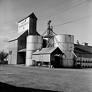 Y-640414D-03.  Woodburn Fertilizer & Grain. Woodburn Fertilizer had just changed its name painted on the feed mill when this photo was taken. It was destroyed by fire in 1978. The rebuilt company remains on North Front street in Woodburn. photo April 14, 1964