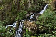 Steelhead Falls near the Reservoir Trail in the Hayward Lake Recreational Area in Mission, British Columbia, Canada