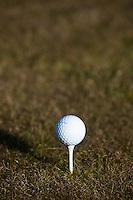 ARNHEM - golfbal op tee.  COPYRIGHT KOEN SUYK