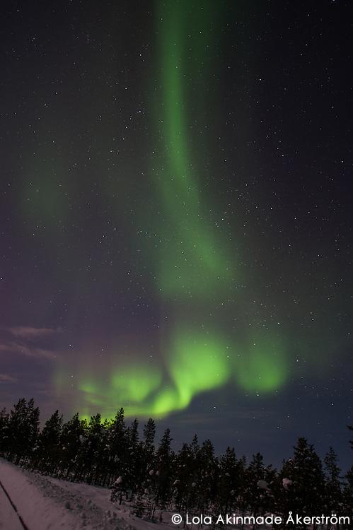 Northern Lights above backroad and lake in Kiruna, Swedish Lapland