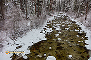 Snowfall coats the forest along Logan Creek in the Flathead National Forest, Montana, USA