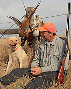 Upland bird hunting