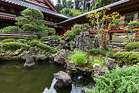 Honzenji Temple Garden - Honzen-ji is a large temple and historic site in Togane, Chiba Prefecture.  The temple grounds are adjacent to Lake Hakkaku formerly known as Tani Pond a local park and famous spot for viewing cherry blossoms in April.  Honzenji itself has a well maintained pond garden, and is also known for its cedar grove and plum blossoms which precede the cherry blossoms of the nearby pond.  The temple was built on Shiroyama Hills, built during the Kamakura Period although the exact dates are unknown, now a Rinzai Sect of Buddhism.   Honzenji was the family temple of Sadataka Sakai, of nearby Togane Castle now in ruins.  The temple has a massive cemetery with an exclosure for the burial of pets as well.  Honzenji is a Togane City designated historic site.