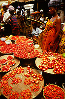 Women selling tomatoes and peppers in an open food market in Ibadan, Nigeria
