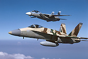 F-18 and F-14 TOPGUN school-assigned jets
