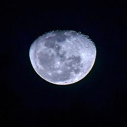 """""""Lua (satélite natural) fotografado em Linhares, Espírito Santo -  Sudeste do Brasil. Bioma Mata Atlântica. Registro feito em 2016.<br /> <br /> <br /> <br /> ENGLISH: Moon photographed  in Linhares, Espírito Santo - Southeast of Brazil. Atlantic Forest Biome. Picture made in 2016."""""""