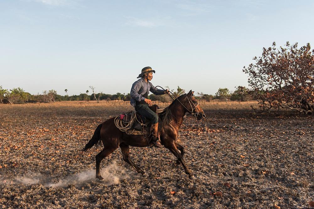 Amerindian Cowboy<br /> Savanna <br /> Rurununi<br /> GUYANA<br /> South America<br /> Richard Peters