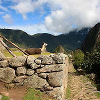 South America, Peru, Machu PIcchu.