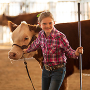 Sedona Sifford, 8, shows Hereford cattle at the State Fair in Doswell, Virginia. Nathan Lambrecht/Journal Communications