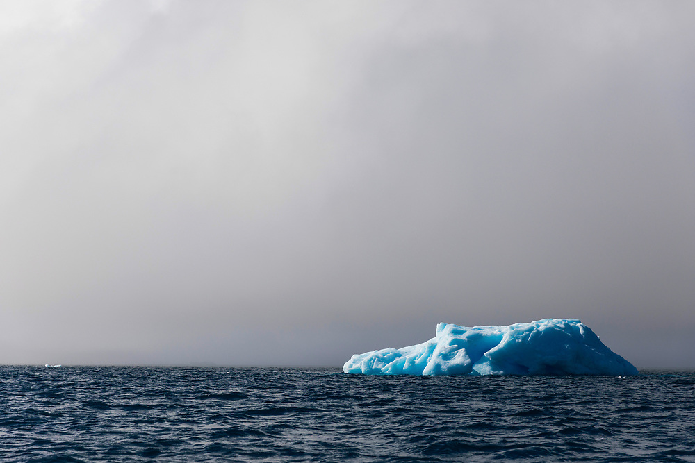 An Iceberg in the sun on Wednesday, Feb. 7, 2018 in Paulet Island, Antartica. (Photo by Ric Tapia)