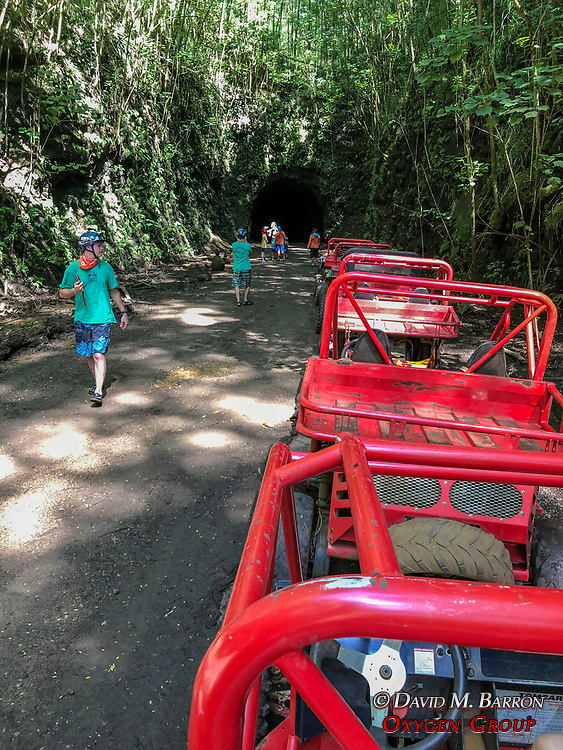Mud Buggy Waterfall Tour
