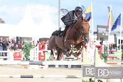 Van Den Broeck Tim, BEL, Cazan van het Schaeck Z<br /> 6 years old Horses<br /> BK Young Horses Gesves 2021<br /> © Hippo Foto - Julien Counet
