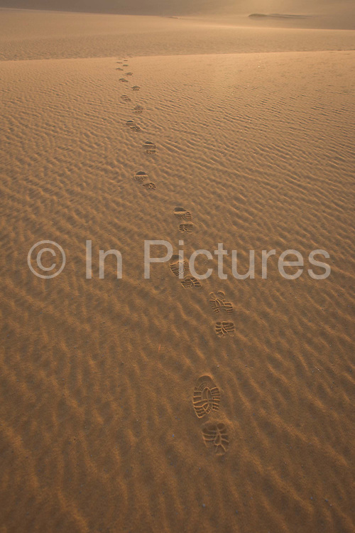 Human presence in the form of footprints left in the sand of dunes at al-Galamun, near Dahkla Oasis, Western Desert, Egypt. From the foreground where we see the ripples of the dune to the distance where the bootprints disappear over the edge, a person has walked off into the desolation and loneliness of the vast emptiness. The Western Desert covers an area of some 700,000 km2, thereby accounting for around two-thirds of Egypt's total land area. Dakhla Oasis is one of the seven oases of Egypt's Western Desert (part of the Libyan Desert). It lies in the New Valley Governorate, 350 km (220 mi.) and measures approximately 80 km (50 mi) from east to west and 25 km (16 mi) from north to south.
