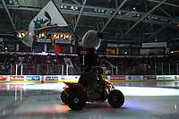 KELOWNA, CANADA - NOVEMBER 21:  Rocky raccoon, the mascot of the Kelowna Rockets enters the ice against the Regina Pats on November 21, 2018 at Prospera Place in Kelowna, British Columbia, Canada.  (Photo by Marissa Baecker/Shoot the Breeze)